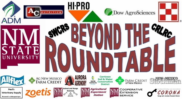 Image of Beyond the Roundtable